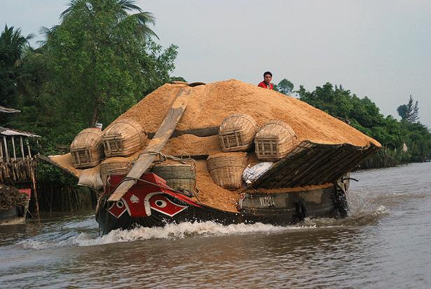 Rice husks on the Mekong River, Vietnam