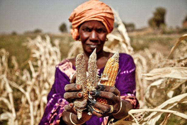 Sahel_drought