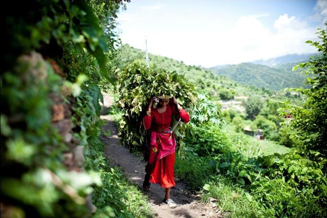 Nepal-woman
