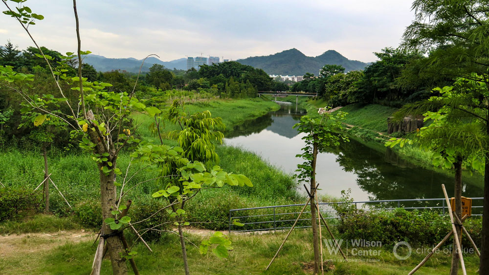 Futian Park