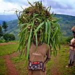 Rwandan youth