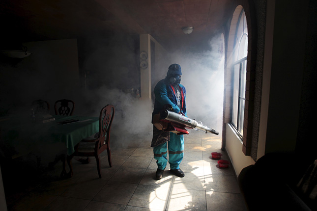 Zika-eradication